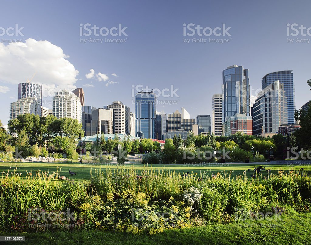 Modern Downtown viewed from near by park stock photo