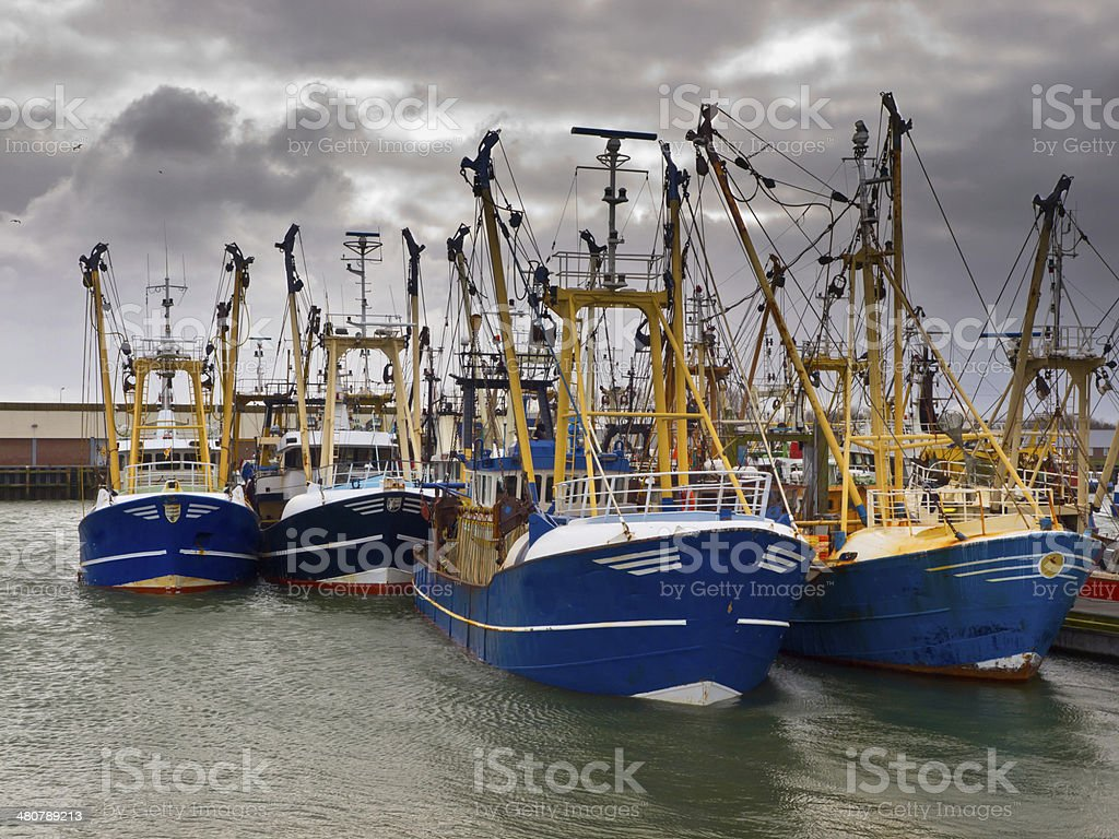 modern fishing fleet stock photo
