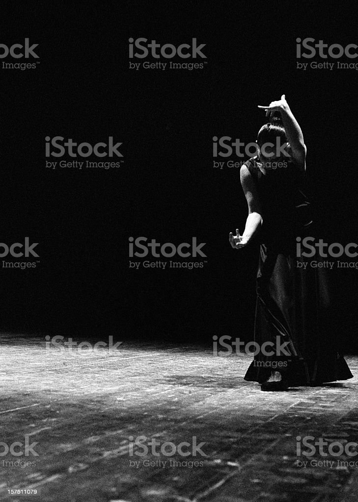 Modern flamenco royalty-free stock photo