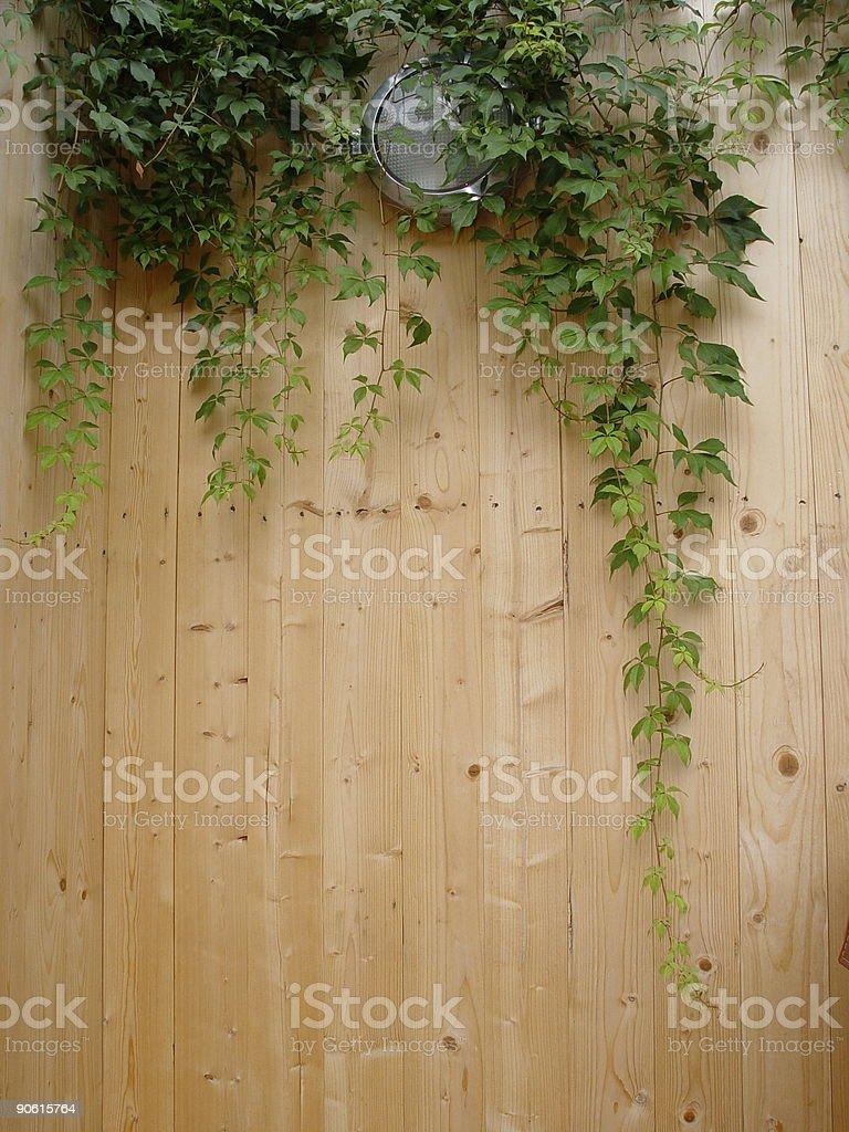 Modern Garden royalty-free stock photo