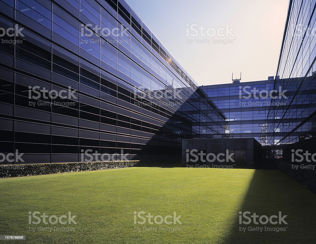 Modern glass office building with grass field. stock photo