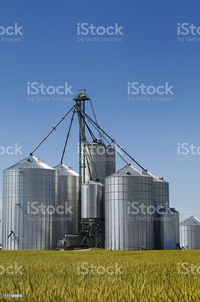 Modern grain elevators stock photo