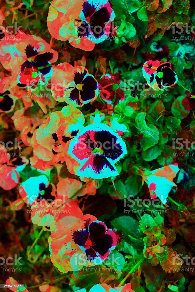Modern Graphic Digital Floral Art Design stock photo