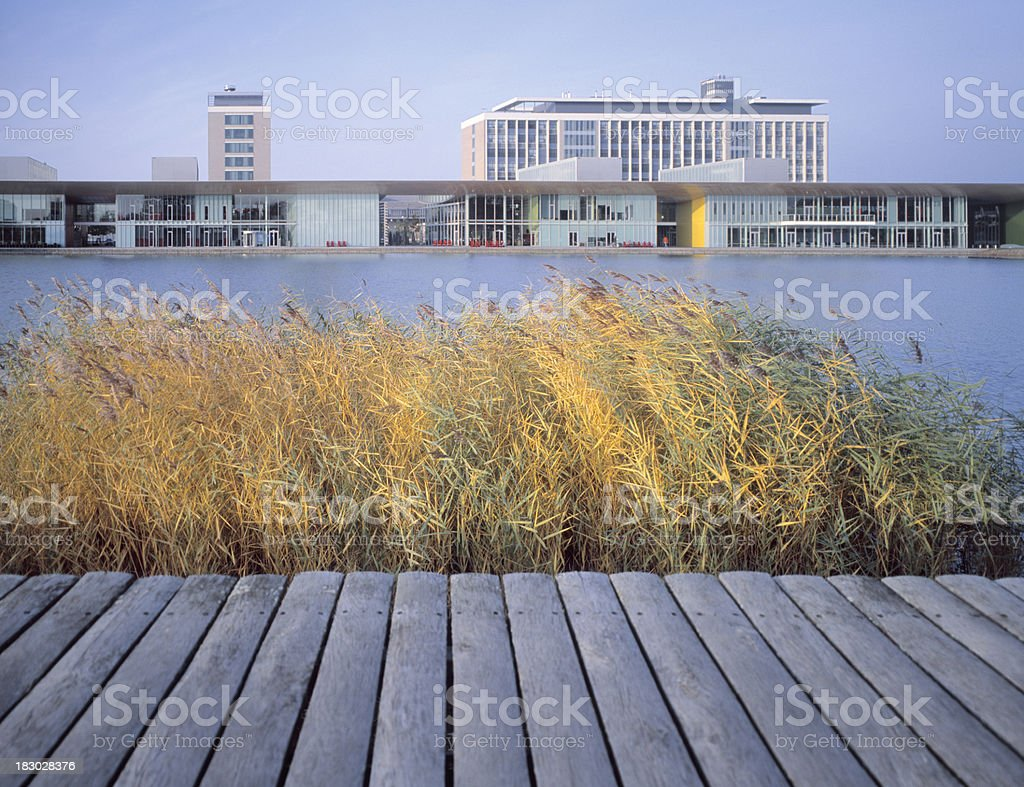 Modern idyllic office park with lake in front. stock photo