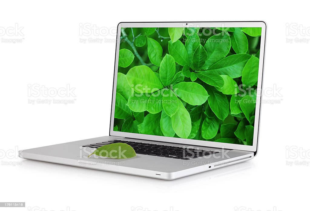 Modern laptop with magnolia tree leaf - left side view royalty-free stock photo