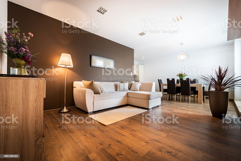 Modern living room with kitchen stock photo
