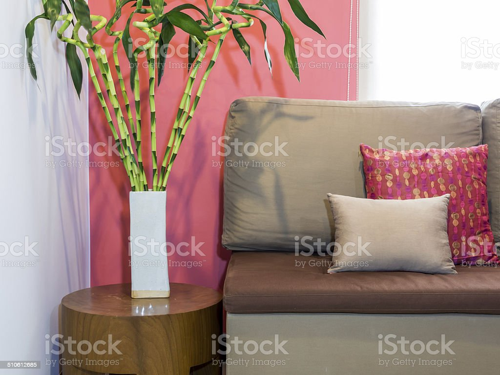 Modern living room with sofa and vase of Lucky bamboo stock photo