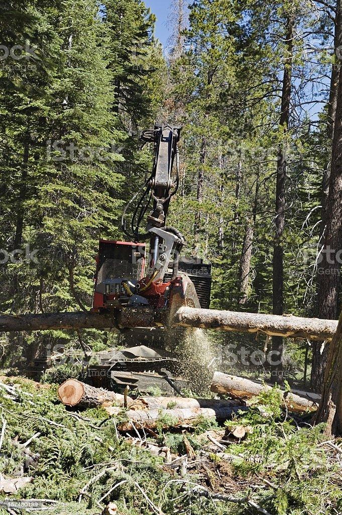 Modern Logging Equipment royalty-free stock photo