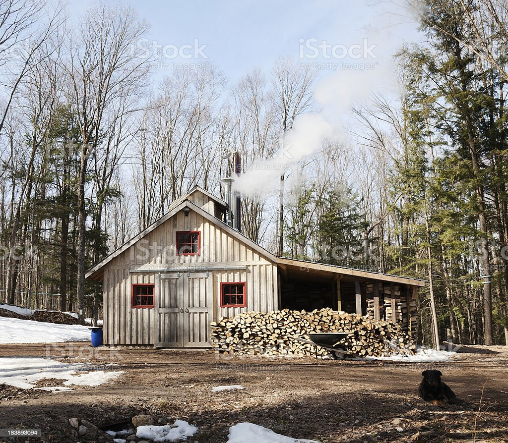 Modern Maple Syrup Shack stock photo