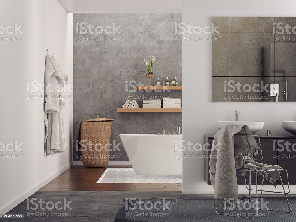 Fantastisch Ausrüstung Und Geräte, Badewanne, Badezimmer, Beton, Toilette. Modern  Minimalist .
