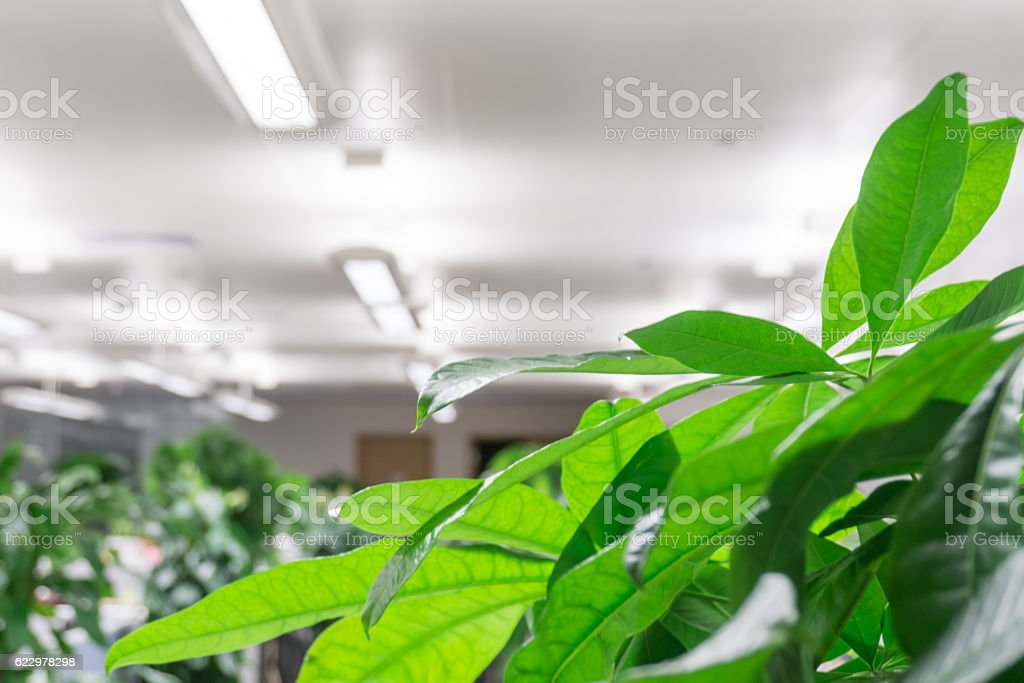 Modern office building indoors stock photo