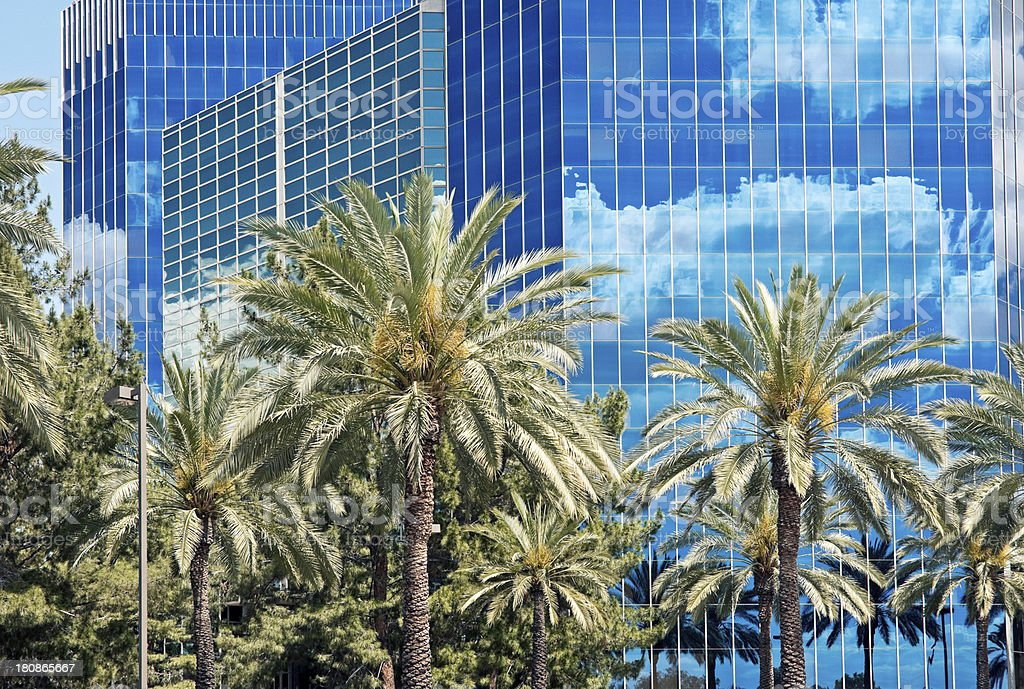 Modern office buildings and palm trees in Phoenix AZ royalty-free stock photo
