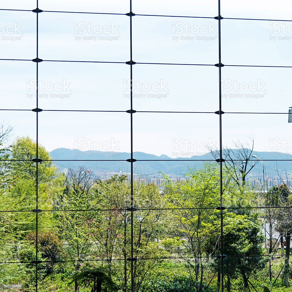 Modern office window with green tree stock photo