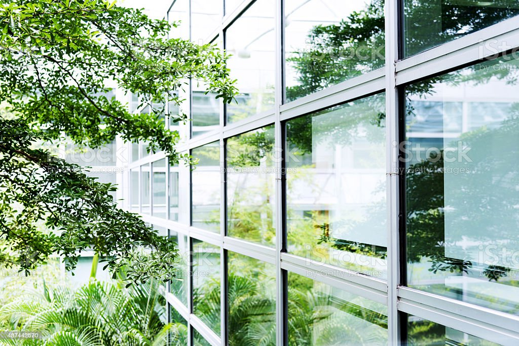 Modern office with tree stock photo