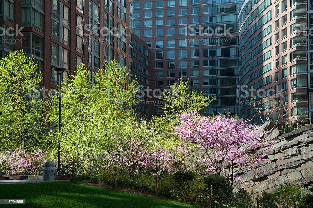 Modern residential apartments with garden space stock photo