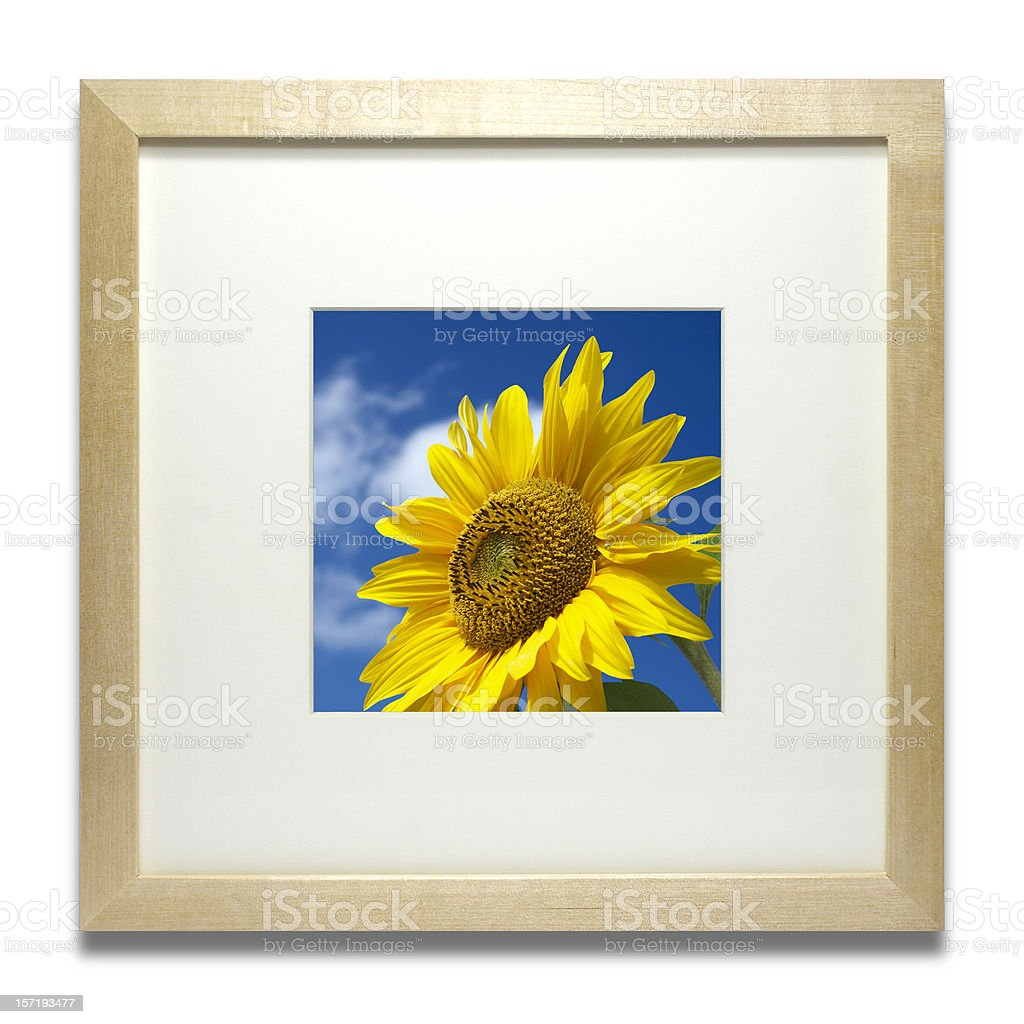 Modern stylish wooden frame (isolated with clipping path) royalty-free stock photo