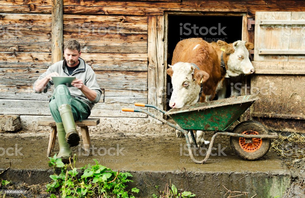Modern Swiss farmer with digital tablet stock photo
