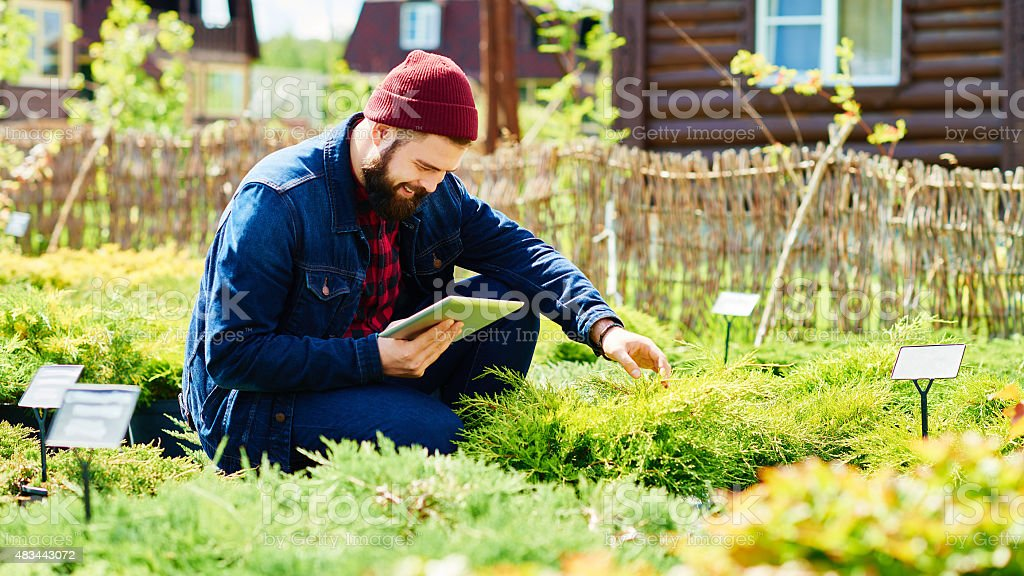 Modern technology in horticulture stock photo