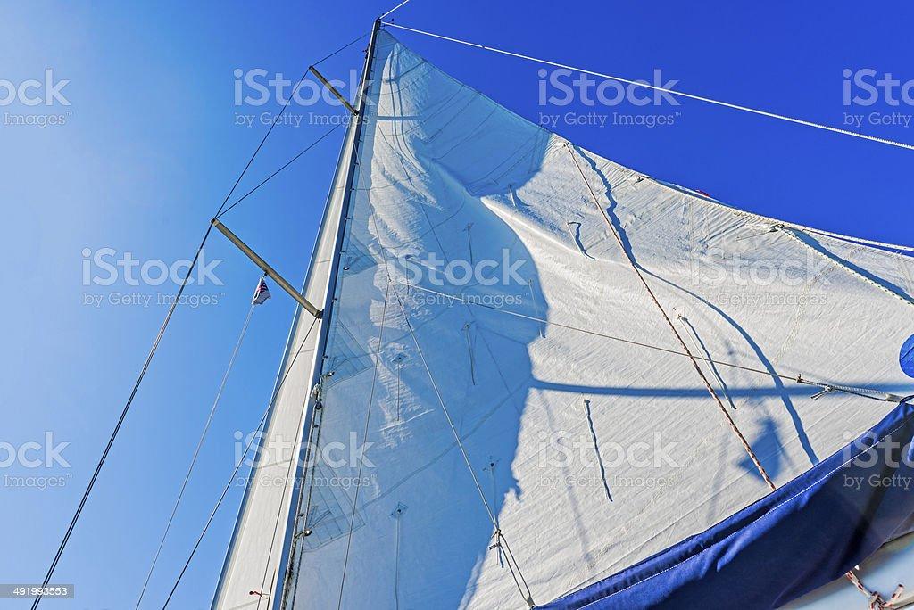 Modern Yacht main sail. stock photo