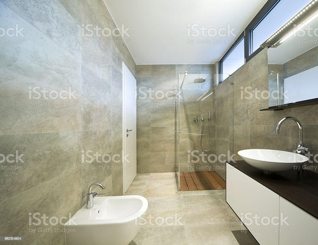 Modern-looking bathroom interior with show and sink royalty-free stock photo