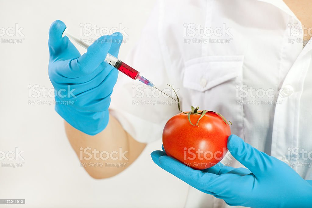 modified food royalty-free stock photo