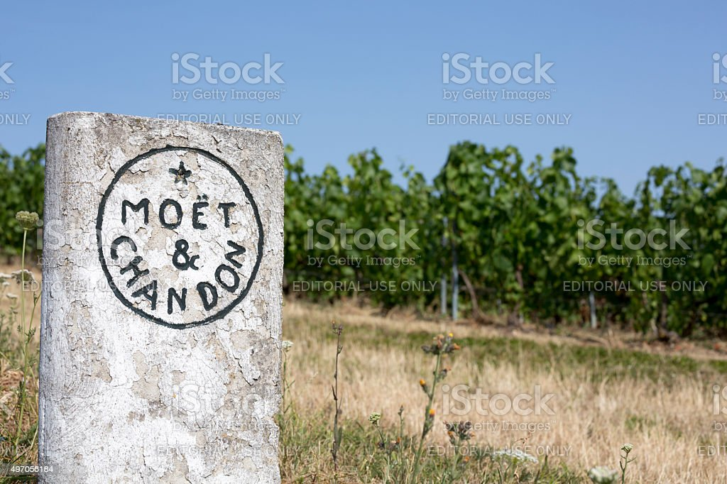 Moet & Chandon Vineyards, France Champagne House stock photo