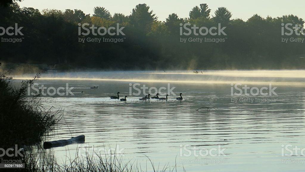 Mohawk River Edge, Morning Steam, Maalwyck Park, Scotia, New York stock photo