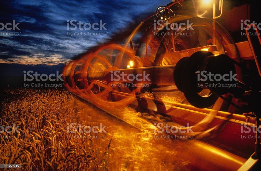 moisson stock photo