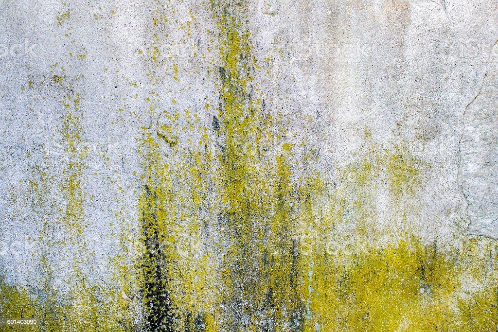 moisture on concrete wall stock photo
