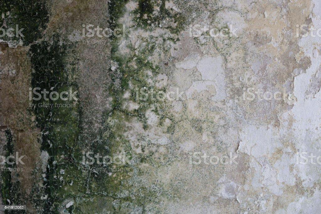 Moisture wall texture stock photo