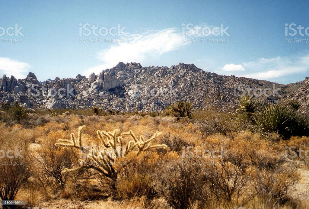 Mojave desert National Preserve, California stock photo