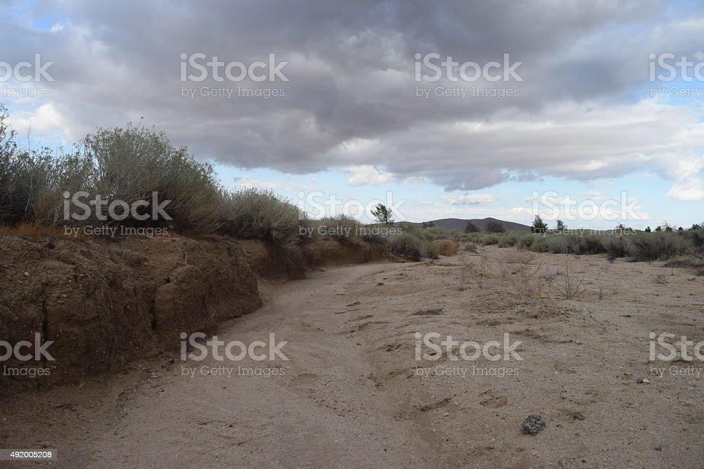 Deserto Mojave foto stock royalty-free