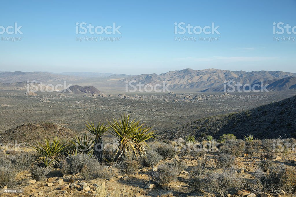 Mojave Desert vista from Ryan Mountain stock photo