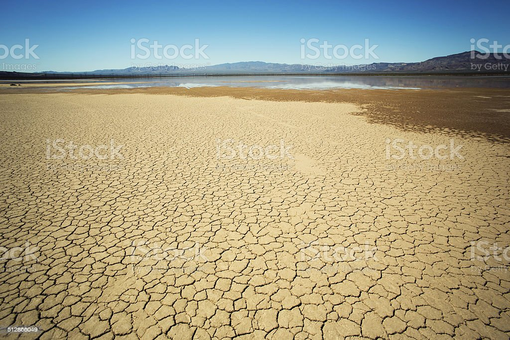 Mojave Desert with rare rainfall stock photo