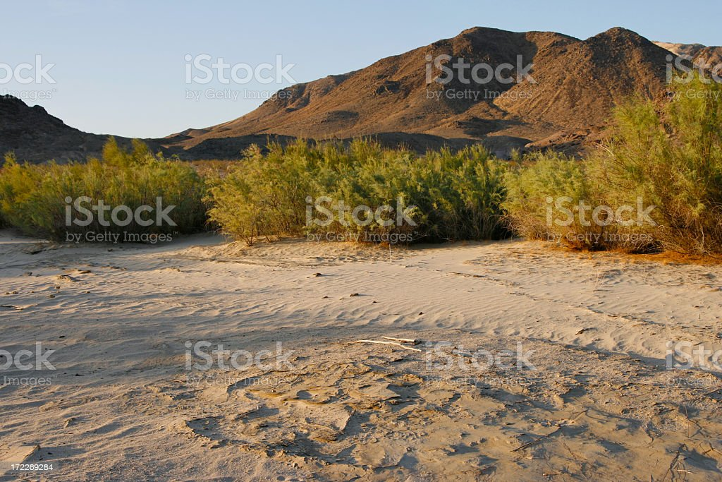 Mojave River Bed royalty-free stock photo