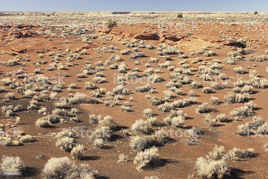 Mojave Sonoran Desert Barren Landscape royalty-free stock photo