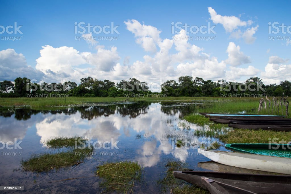 Mokoro Canoe Trip in the Okavango Delta near Maun, Botswana stock photo