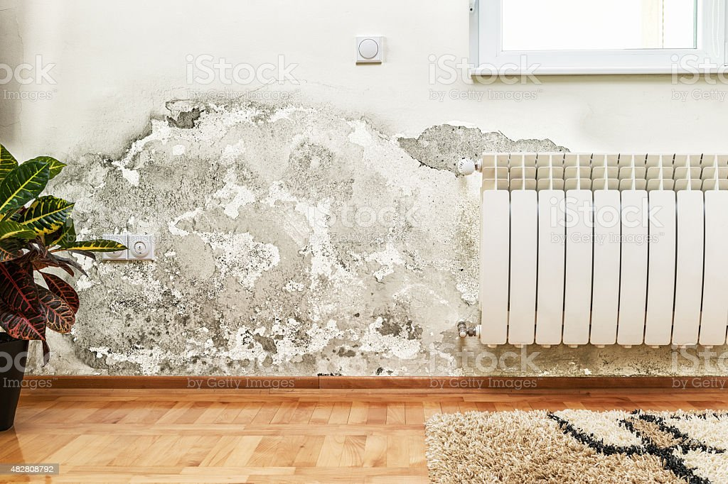 Mold and moisture buildup on wall of a modern house stock photo