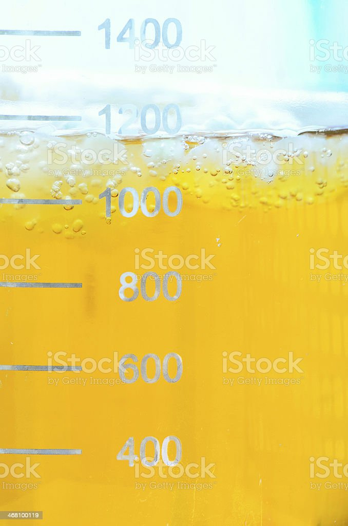 Mold cultures growing in the glass bottle. royalty-free stock photo