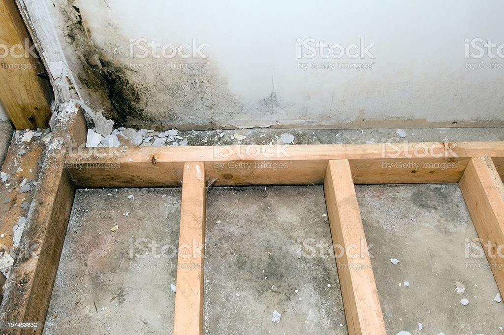 Mold grows in basement bathroom royalty-free stock photo