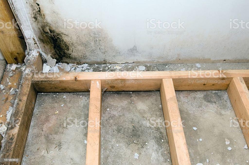 Mold grows in basement bathroom stock photo