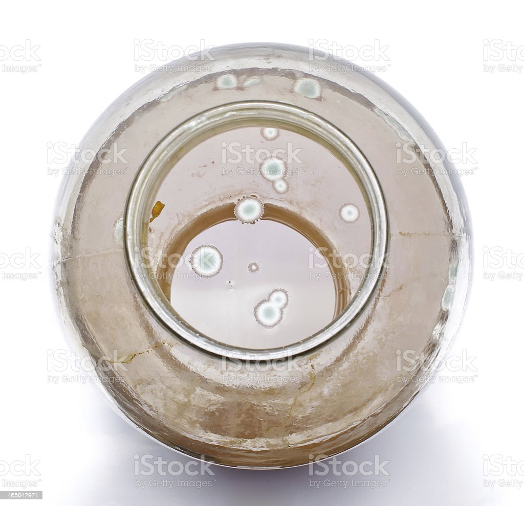 Mold in the jar of juice stock photo