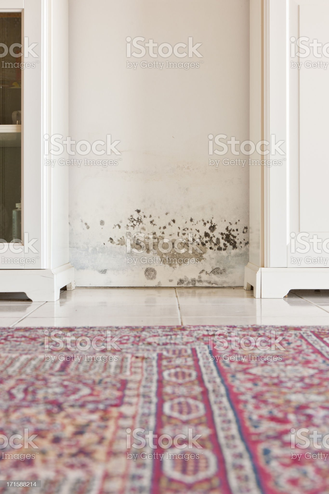 Mold Mould Stains on Damp Wall between Cabinets royalty-free stock photo