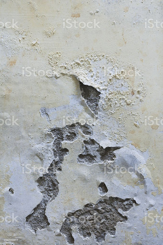 Mold on a wall stock photo