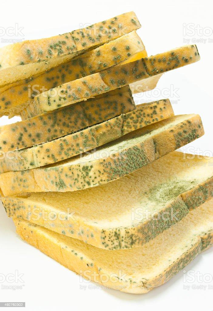 mold on bread stock photo