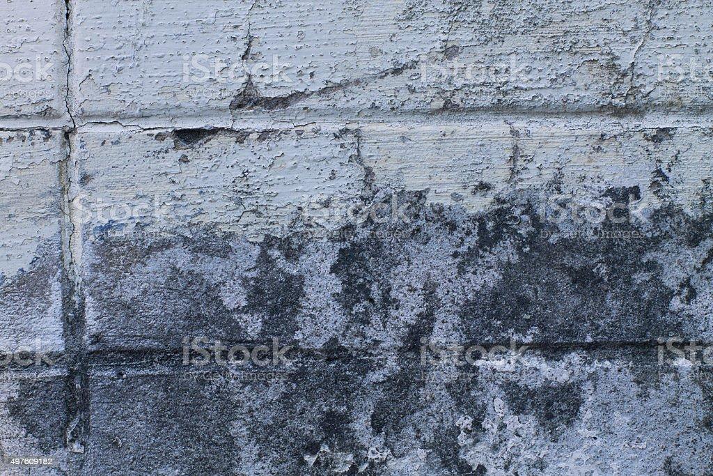 mold on wall stock photo