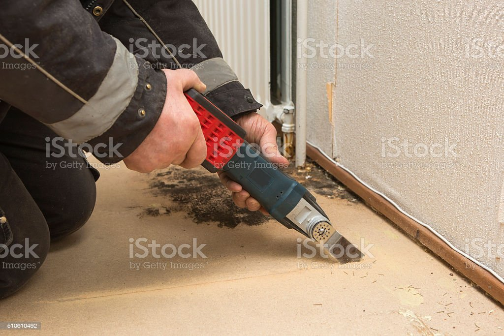 mold problem stock photo