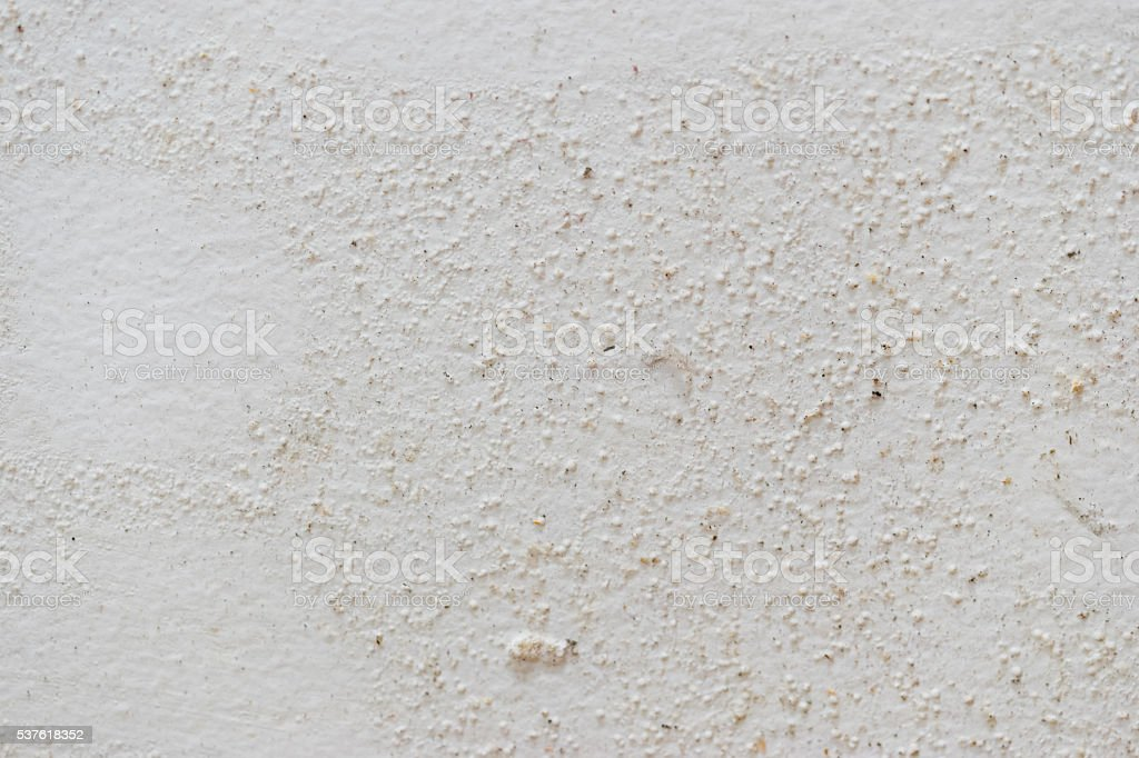 Mold texture on white damped wall background stock photo