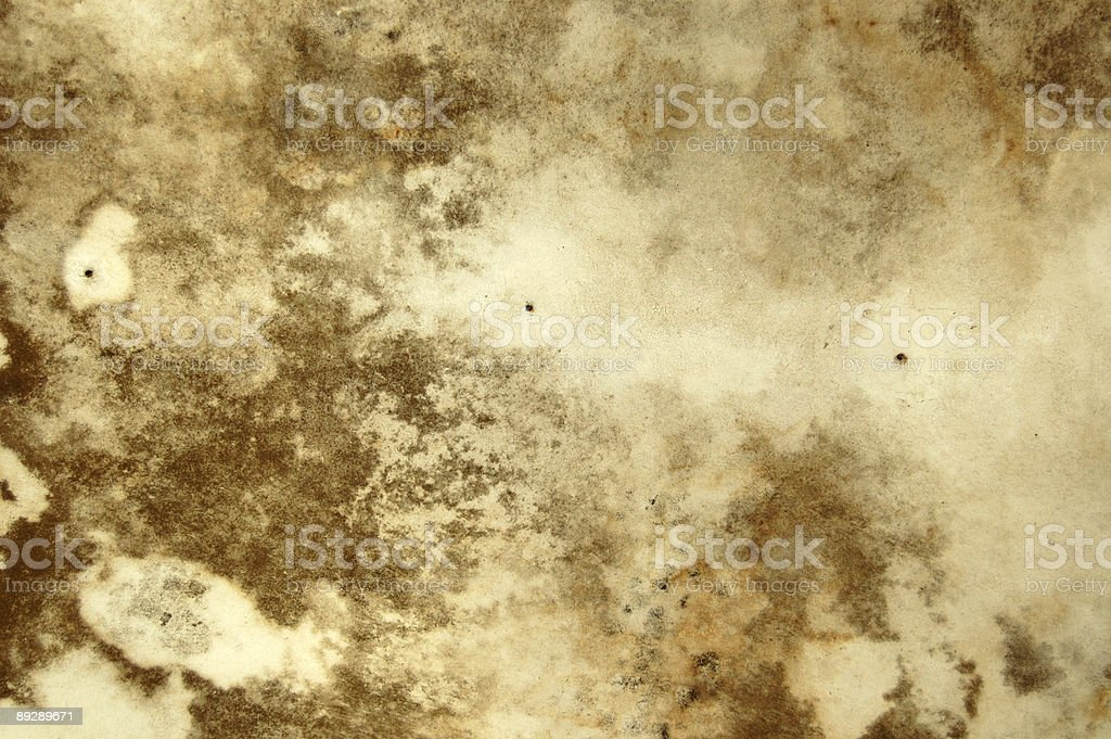 mold texture royalty-free stock photo