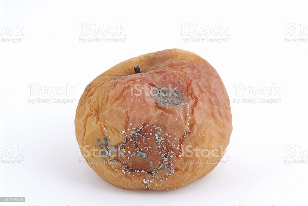 moldy apple royalty-free stock photo